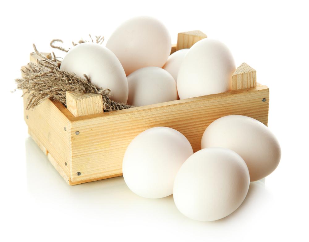 سعر البيض اليوم - اسعار مزارع البيض الكبرى