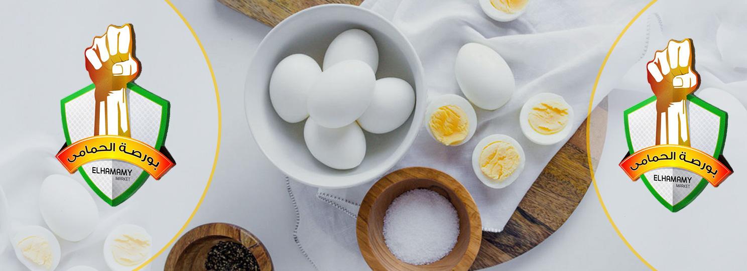 منتجات البيض عالية الجودة