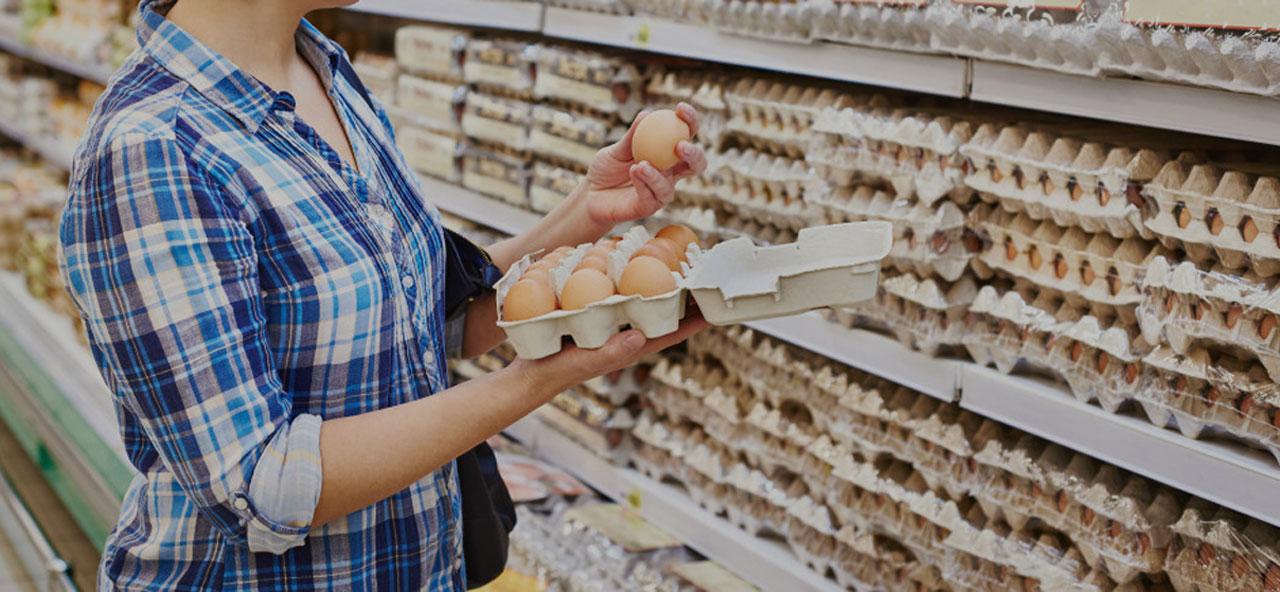توريد بيض المائدة للمحلات والأسواق